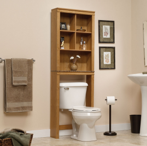 Vertical storage toilet